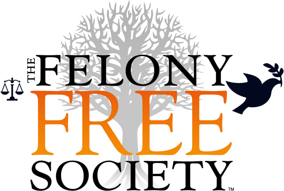 The Felony Free Society